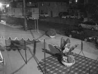 LA Outside Temple Webcam (click to start)